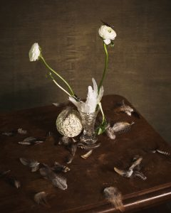 Still life with flowers and feathers by Heidi Rondak