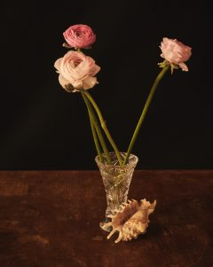 Still life with flowers and shell by Heidi Rondak