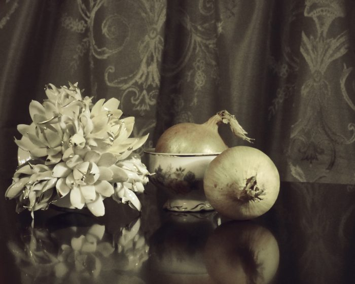 Still life with porcelain and onion by Heidi Rondak